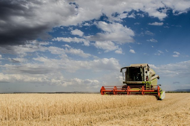 Poor weather hit harvest incomes for farmers last year