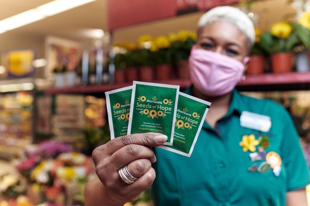 Morrisons stores will be working with schools, care homes and community groups to distribute the packs and plant the seeds in their local areas. Photo: Mikael Buck