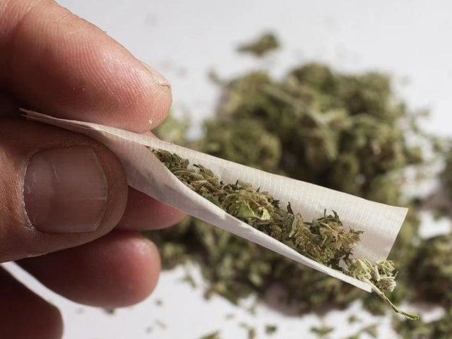Cannabis image.